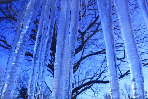 Blue January