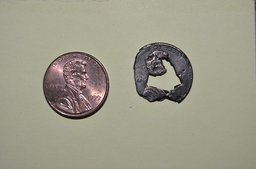 Penny retrieved from stomach of a dog