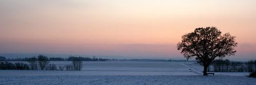 schnee winter sunset panorama snow nature backlight germany geotagged deutschland colorful europa europe sonnenuntergang natur explore dezember 31 2009 rheinland gegenlicht alfter canonefs1855mmf3556