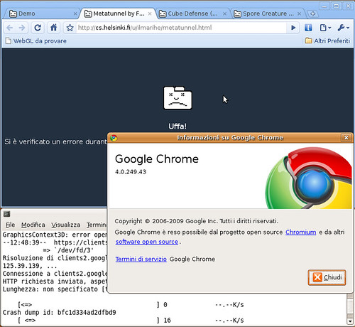 Chrome Linux beta 4.0.249.43 - WebGL crash