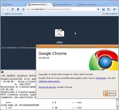 Chrome Linux beta 4.0.249.43 - WebGL crash