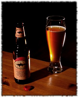 Friday Fermented Feature: Dogfish Head 90 Minute IPA