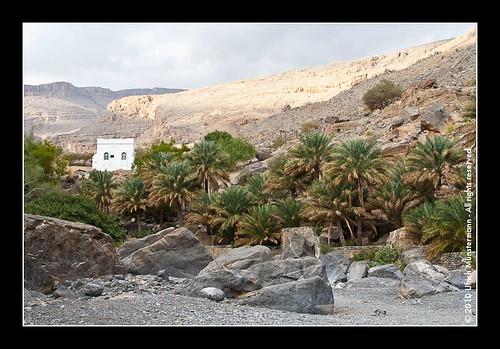 city mountains tree rock river gulf middleeast mosque canyon palmtree riverbed oman wadi rivier moskee alhamra mosche flus buildingslandmarks ghul alhajarmountains addakhiliyahregion منطقةالداخلية addakhiliyah