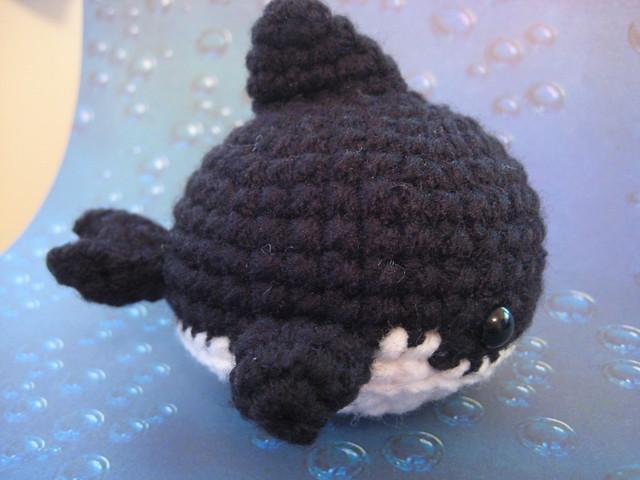 - Baby Orca - Flickr - Photo Sharing!