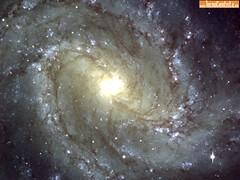 Galaxia-Buscape