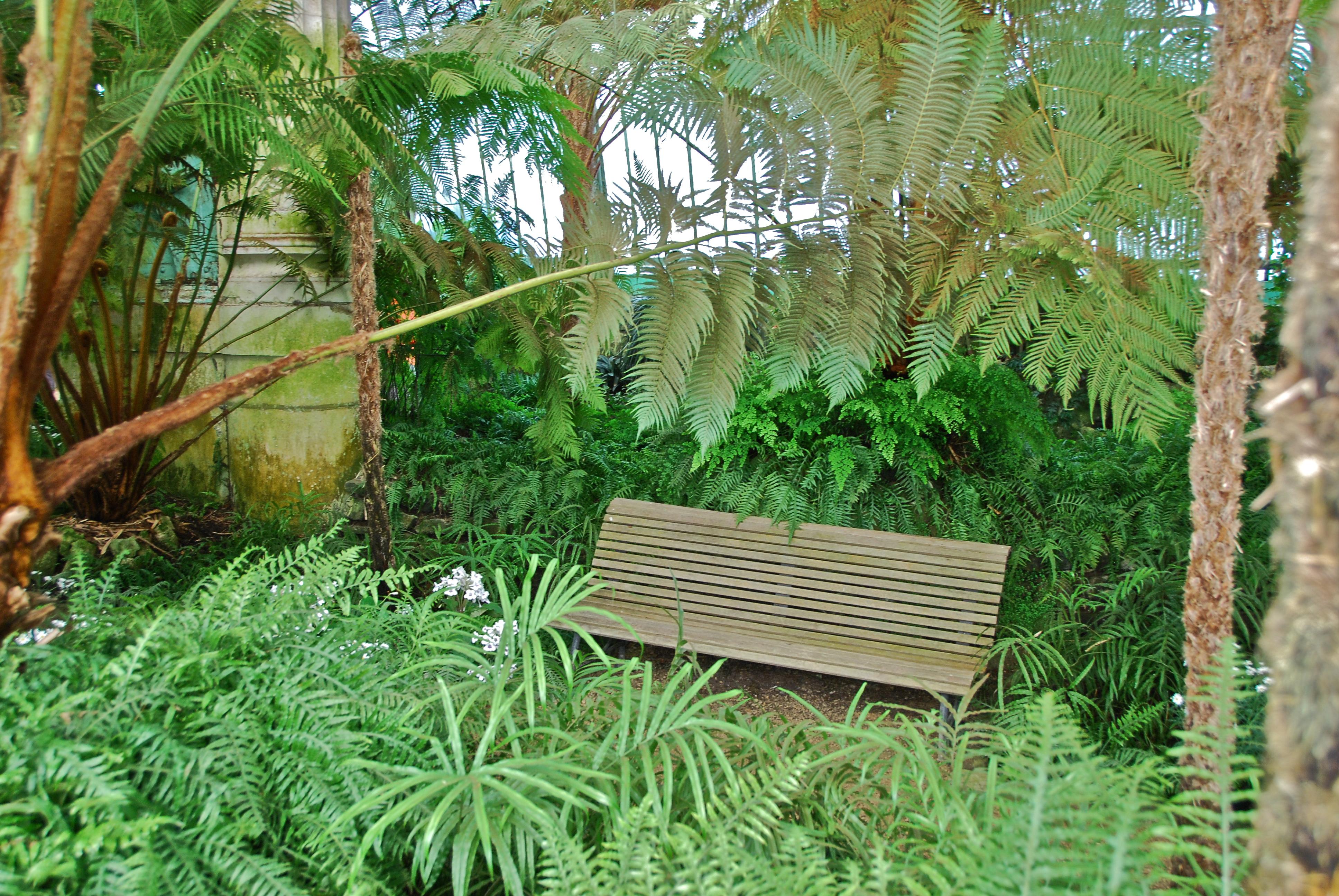 Serre Du Bois Du Sart - Un des bancs en bois (Serres Royales du chateau de Laken Bruxelles) Flickr Photo Sharing!