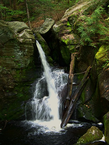trees plants green nature water waterfall rocks cascade aliciakeys fallin granbyct endersstatepark enderforest