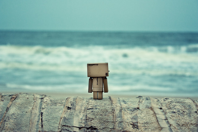 Explored! - Danbo at the beach! - MPL 4