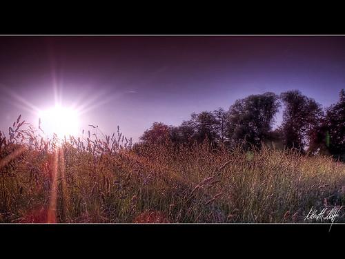sunset nature backlight hungary hdr szombathely rét ellenfény fujis1500