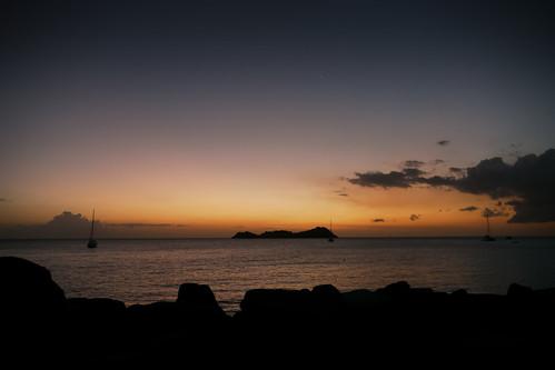 sunset sky bird animal boat pigeon guadeloupe basseterre bouillante 201004guadeloupe