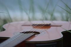 My Love ~ my Guitar