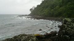 20100201_012.jpg