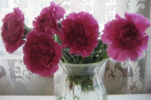 Kukkia ystävältä