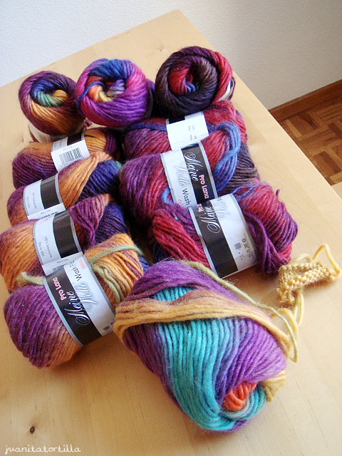 27.Feb.10 Bought Pro Lana wool