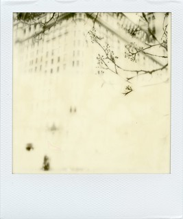 Polaroid064 - Version 2
