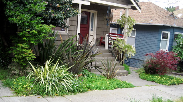 Overgrown plants in front of house flickr photo sharing for Plants for front of house
