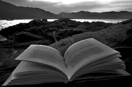 Llibre per nedar