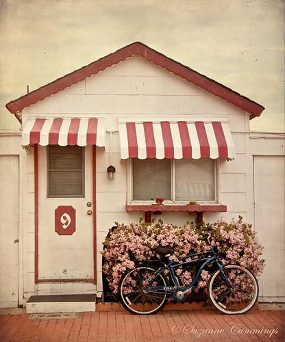 bicycle vintage action textures redandwhite oceansideinn sunsetbeachcalifornia beachrental lesbrumestextures michellenicoleaction skeletalmessshadowhousecreations