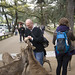 Feeding The Deer, Nara Japan by Chicago_Tim
