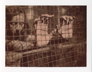 Caged Hands