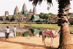 Angkor Wat + horse+ chair