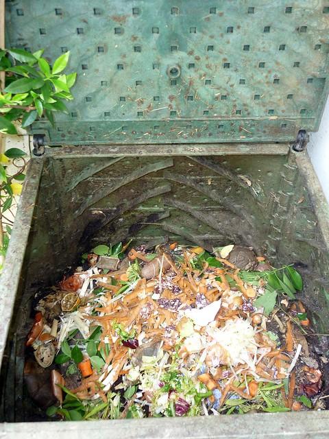 Compost Heap - Inside