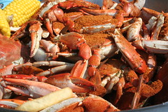 fish(0.0), dungeness crab(0.0), king crab(0.0), homarus(0.0), american lobster(0.0), crab(1.0), animal(1.0), crab boil(1.0), seafood boil(1.0), crustacean(1.0), seafood(1.0), invertebrate(1.0), food(1.0), soft-shell crab(1.0),