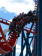 Flamingo Land 227