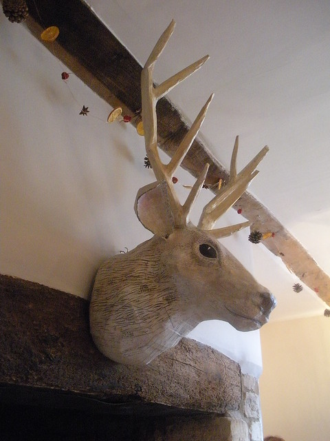 Paper mache deer head | Flickr - Photo Sharing!