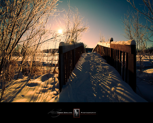 morning bridge trees winter sky sun snow cold nature sunshine wisconsin landscape photography photo midwest frost shadows image path branches january picture footprints explore trail madison canonef1740mmf4lusm 2010 canoneos5d flickrexplore ninesprings lorenzemlicka