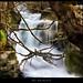 20100117 - Cascada rio Majaceite by fran_jcr
