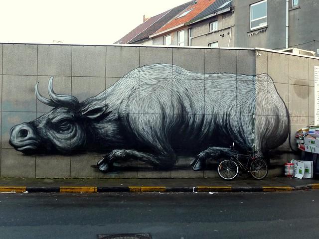 graffiti | roa | ghent . belgium