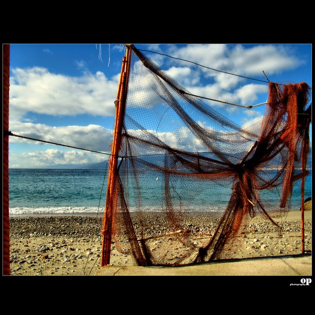 Winter Beach - The Net