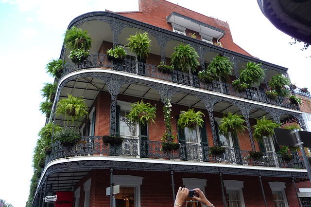 Hanging plants on balcony flickr photo sharing - Hanging plants in balcony ...