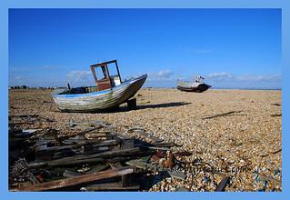 dungeness beach 58