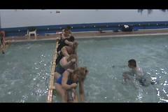 PDBC pool paddling