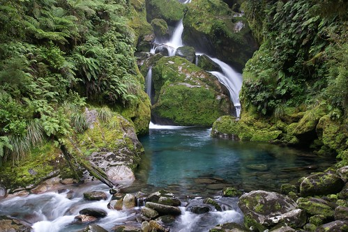 almassengale's photo of the Milford Track