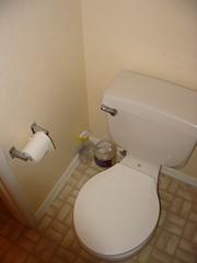 bathtub(0.0), urinal(0.0), bidet(0.0), floor(1.0), toilet(1.0), room(1.0), plumbing fixture(1.0), toilet seat(1.0), bathroom(1.0),