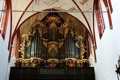 Im Dom zu Brandenburg - 3