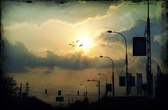 opposite the sun