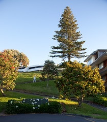 Lombard Street, St Heliers Bay, Auckland