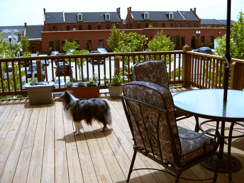 Summer winds patio furniture for Summer winds patio furniture