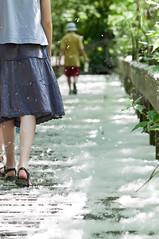 walk in flower snow | la marche dans une neige de fleurs
