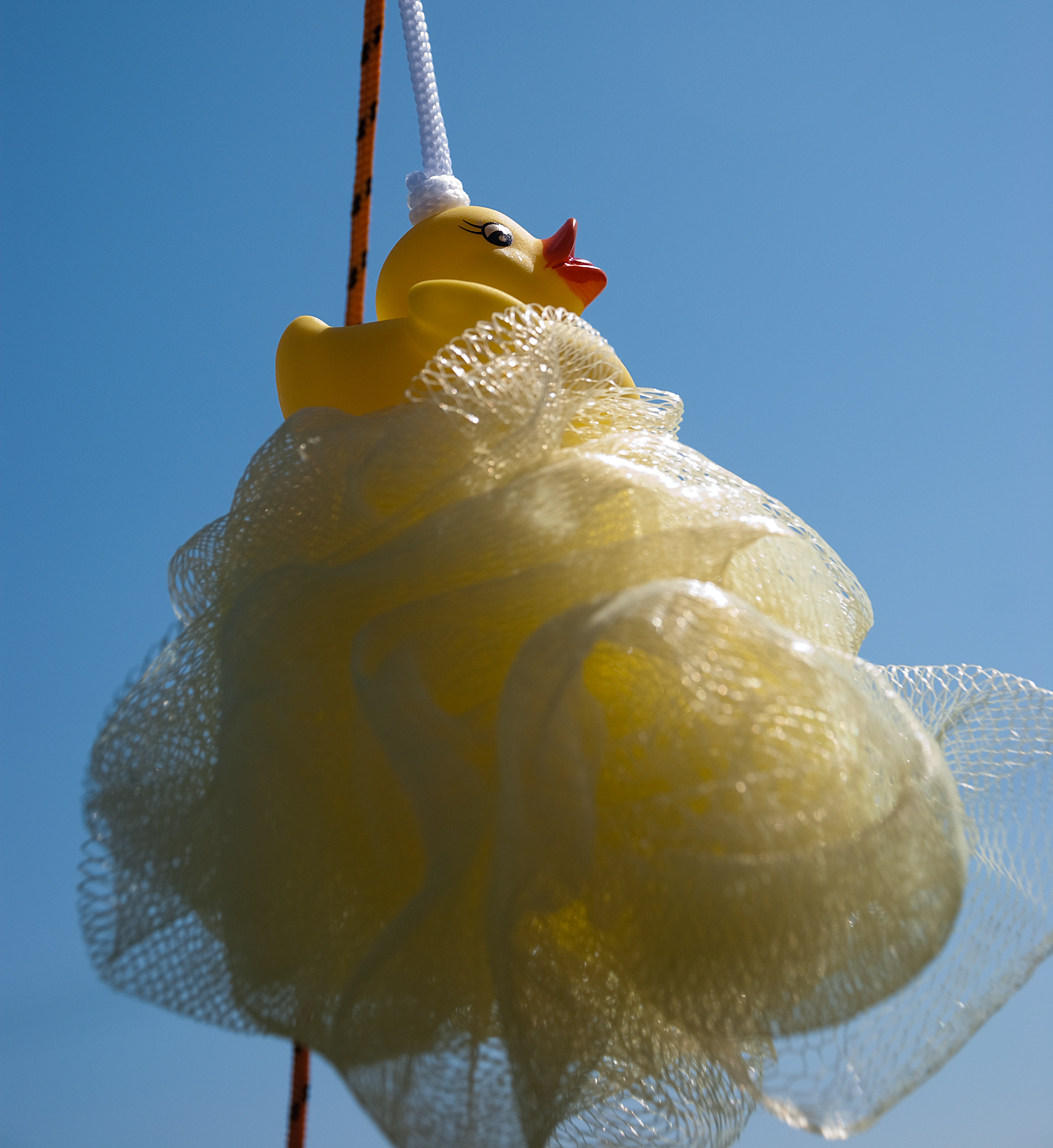Mesh Shower Puffs – How Safe Are They? - Health Tips Website ...