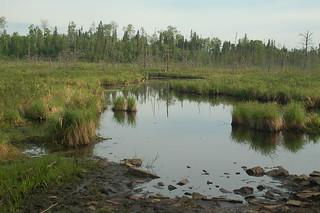Wood Lake Entrance