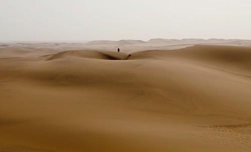 africa beautiful landscape sand dune namibia swakopmund skeletoncoast erongoregion q9099571
