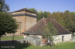 52 Laneuville-à-Rémy - Photo of Mertrud