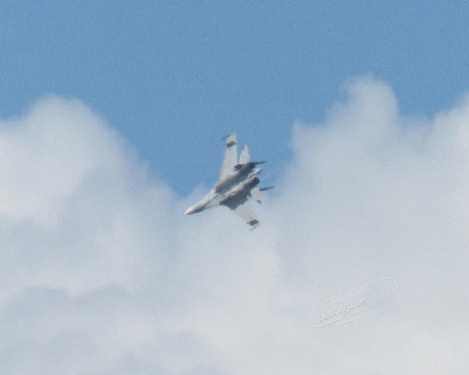 Sujoi Su-30 MK2 - Página 21 35340332340_d9221dadbc_h