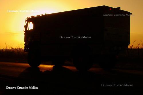 Autor: Gustavo Cruceño Molina
