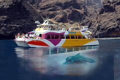 Excursión en catamaran